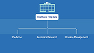 Graph Analytics in Healthcare Big Data